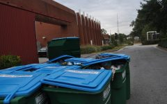 It's not easy being green: recyclables being trashed?