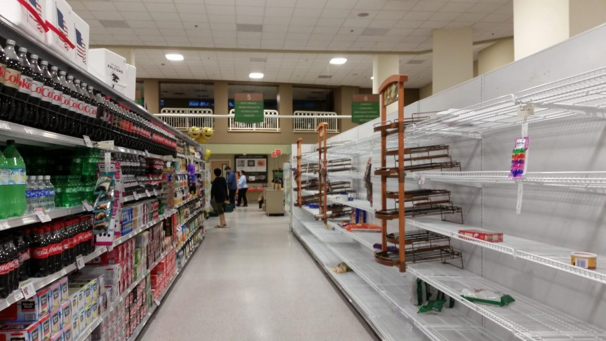Atlanta+citizen%27s+raid+grocery+stores+for+nonperishables+in+preparation+for+the+storm.