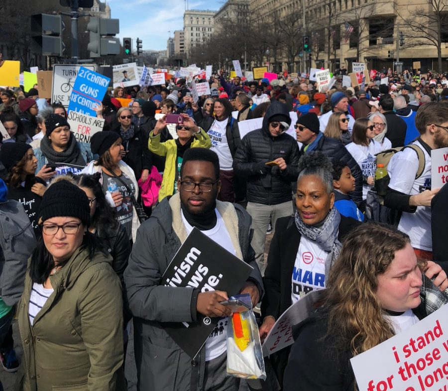 VIEWS+FROM+CAPITAL+HILL%3A+Crowds+of+people%2C+including+students%2C+from+across+the+country+marched+to+the+capital%2C+demanding+legislation.