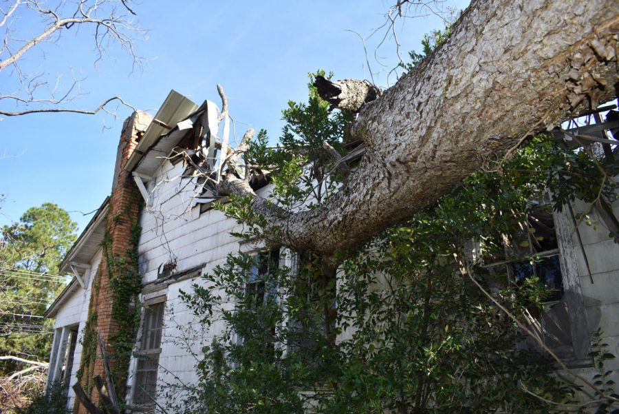BEYOND REPAIR: While some homes are able to be restored, others were damaged beyond repair. This abandoned home suffered damage from three trees.