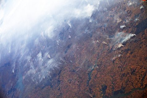 The Whole Picture: Amazon Rainforest fires