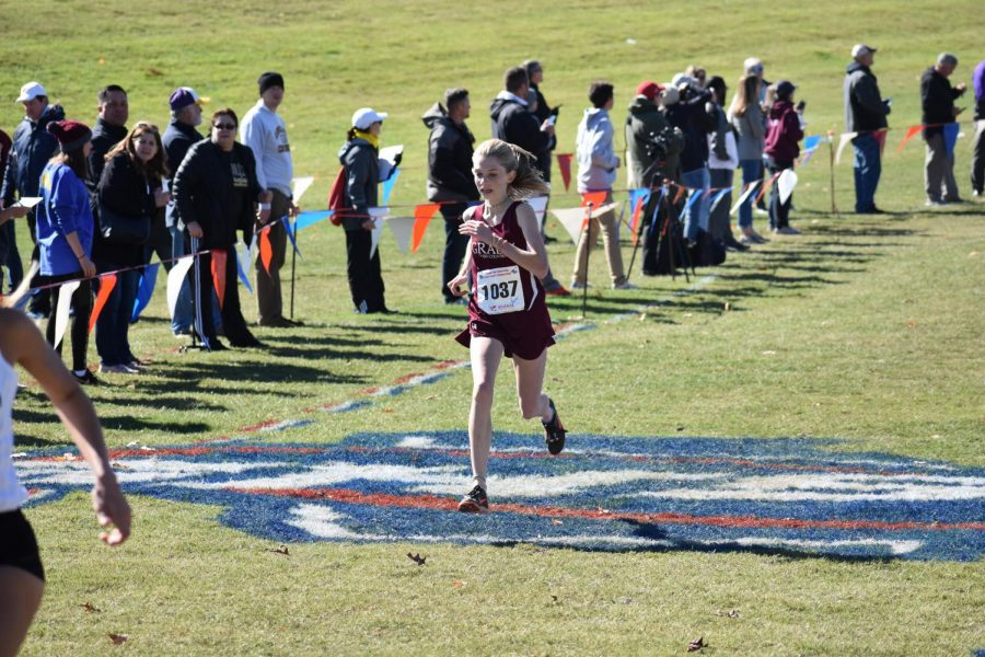 Sophomore Ellie Spears makes long strides down the finishing chute at the state 5A meet. Spears finished 29th overall and first for the Knights, helping to lead the team to 8th place at the meet.