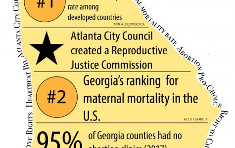 Atlanta Reproductive Justice Commission highlights increasing role of city governments