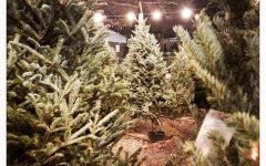 A seasonal tradition for 21 years, Inman Christmas tree lot gives back to community