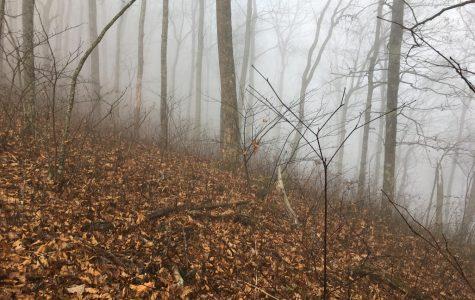During coronavirus, hike the best trails in Georgia
