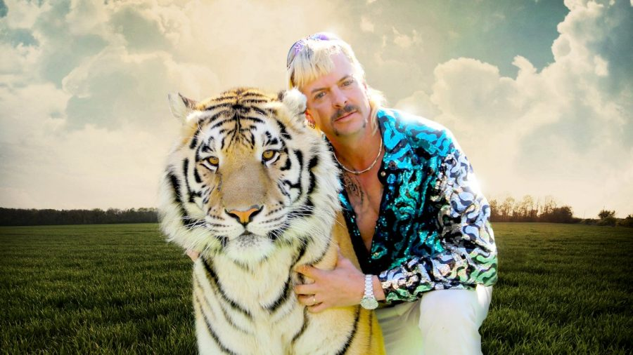 Tiger+King%3A+Murder%2C+Mayhem%2C+and+Madness+is+a+new+hit+documentary+on+Netflix+starring+private+zoo+owner+Joe+Exotic.