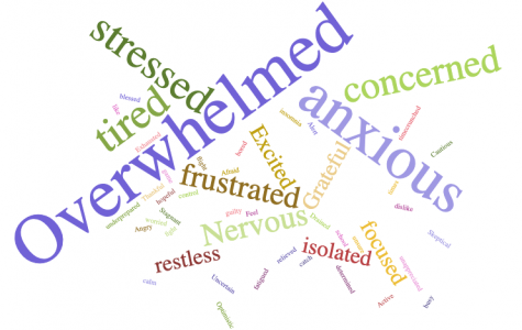 A survey with 37 Grady teachers asked them the three words that best describe how they have been feeling since the start of virtual school, these were the words most repeated.