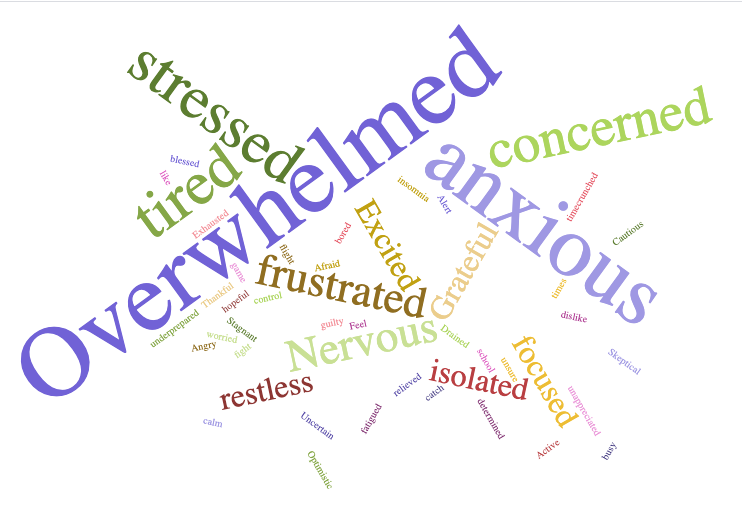 A+survey+with+37+Grady+teachers+asked+them+the+three+words+that+best+describe+how+they+have+been+feeling+since+the+start+of+virtual+school%2C+these+were+the+words+most+repeated.
