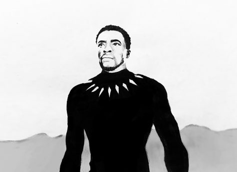 Actor Chadwick Boseman played T'Challa in the hit movie,