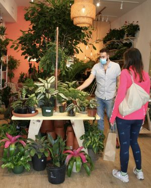 The owner of The Green Flamingo, Brad Scoggins shows a customer the plants in his store. The Green Flamingo is a shop in the Virginia-Highlands that recently opened a few weeks ago.