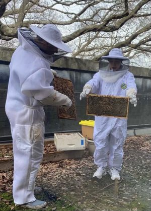 Grady apiculture club member Neisha Ball stands with Ben Sellers last year at a club meeting as they prepare to spin honey. Due to Covid, this widely-enjoyed, hands-on club hasn't met since the 2019-2020 school year.