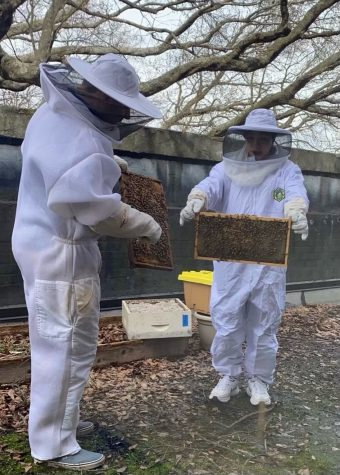 Grady apiculture club member Neisha Ball stands with Ben Sellers last year at a club meeting as they prepare to spin honey. Due to Covid, this widely-enjoyed, hands-on club hasn